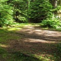 Available tent space at Esswine Group Campground.- Esswine Group Campground