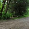 Boardman Creek Group Campground has sites stretched out along a road.- Boardman Creek Group Campground