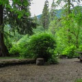 The individual sites are spacious and allow for privacy in the group setting.- Boardman Creek Group Campground