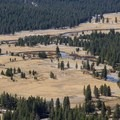 3 miles of the Tuolumne River turns through the alpine meadow.- Tuolumne Meadows