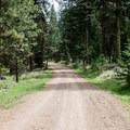 Walking to the Green Springs Loop Trailhead.- Green Springs Loop