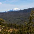 Mount McLoughlin (9,495').- Hobart's Bluff