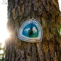 The route to Hobart's Bluff uses the Pacific Crest Trail.- Hobart's Bluff