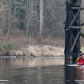 Paddling in the calm waters of the Sammamish River.- Sammamish River Kayak/Canoe