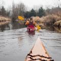 A kayaker paddles the calm waters of the Sammamish River.- Sammamish River Kayak/Canoe