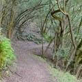 Buckeye Trail.- Skyline Park to Lake Marie Loop