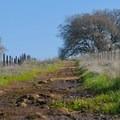 Begin on the Manzanita Trail.- Skyline Park to Lake Marie Loop