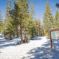 The trail junction near the beginning of the trail. Take the left fork marking the snowmobile route here.- Andesite Peak