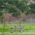Picnic tables at Newell Open Space Preserve.- Newell Open Space Preserve