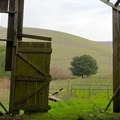 Inside the farmhouse.- Newell Open Space Preserve