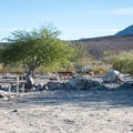 Panamint Springs Campground.- Panamint Springs Campground