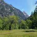 Mount Anderson (7,329') at the head of Enchanted Valley.- Anderson Glacier via Enchanted Valley