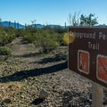 The Perimeter Trail is 1.2 miles long and allows dogs.- Twin Peaks Campground
