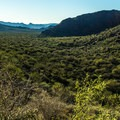 On the return leg of the hike, the view down the canyon to the mountains beyond is lovely.- Arch Canyon Trail