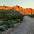 The access road is especially beautiful late in the afternoon when the setting sun lights up the mountains.- Arch Canyon Trail