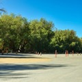Some shaded campsites.- Fiddlers Campground