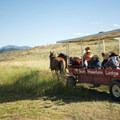 Wagon ride to the Cowboy Dinner.- Sun Mountain Lodge