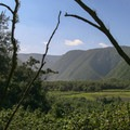 Behind the beach is a view of the Polulu Valley.- Awini Trail