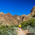 The trail up Arch Canyon is well-marked and a gentle grade.- Arch Canyon Trail