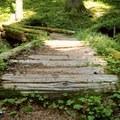 Bridge on the way up toward the ridge.- Yocum Ridge