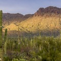 Want to explore the desert? Just step out from your campsite!- Gilbert Ray Campground