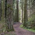 Blue Trail.- Whipple Creek Park