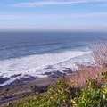 Ocean views await at the end of the loop.- Cook's Ridge + Gwynn Creek Trail