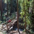 Footbridge across McWay Creek.- Julia Pfeiffer Burns State Park