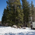 The trail begins at the left edge of the sign post.- Donner Peak + Mount Judah
