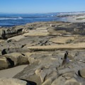 Rock formations host tide pools.- Nicholson Point Park