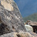 This petroyglyph appears to depict an animal and a human hunter.- Signal Hill Petroglyphs