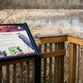 A wildlife viewing platform is positioned on the shores of Virginia Lake.- Wapato Access Greenway Trail + Virginia Lake
