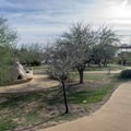 The picnic area has tables, grills, and a nice amount of shade.- Casa Grande Ruins National Monument