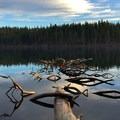 - Suttle Lake Loop