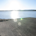 East Bay Campground boat ramp.- Thompson Reservoir, East Bay Campground