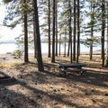 Shoreline campsite at East Bay Campground.- Thompson Reservoir, East Bay Campground