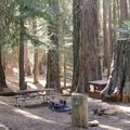 Campsite in Atwell Mill Campground, located just down the road from Mineral King Valley.- Mineral King Valley