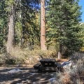 Campsite in Cold Springs Campground.- Mineral King Valley