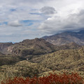 The road quickly begins climbing and offering views of the valley below.- Mount Lemmon Scenic Byway