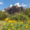 The Superstition Mountains dominate the scene everywhere in this park.- Lost Dutchman State Park Campground
