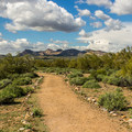 Several trails, including this easy Discovery Trail, lead from the campground.- Lost Dutchman State Park Campground
