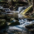 Small rapids above the dam.- Catawba Falls