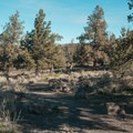 The well-maintained trail leading down to the river valley is full of sagebrush and juniper trees.- Steelhead Falls