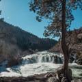 Steelhead Falls with its western juniper (Juniperus occidentalis) guardian. - Steelhead Falls