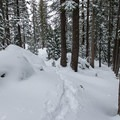 The forested climb to Emigrant Lake.- Emigrant Lake Trail