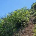 Sections of the trail are steep.- Eagle Peak Loop