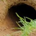 The ground squirrel hole.- Suisun Hill Trail Hike