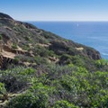 Coastal bluffs.- Dana Point Headlands Conservation Area