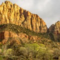 Watchman Campground is the larger of the two campgrounds in Zion Canyon and the only one that takes reservations.- Watchman Campground