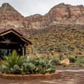 Watchman Campground, Zion National Park.- Watchman Campground